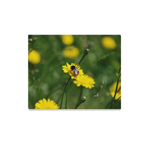 "Bee on yellow flower Canvas Print 20""x16"""