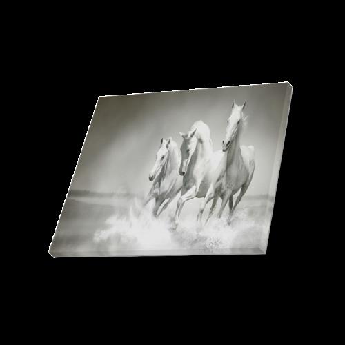 "Animals Series Design White Horses Running Custom Canvas Print 20""x16"""