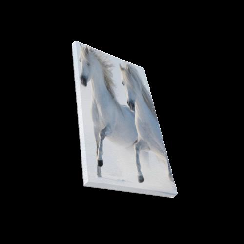 "Animal Series Design 2 White Horses Canvas Print 12""x18"""