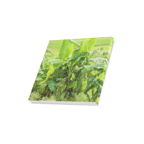 "Banana Tree Canvas Print 16""x16"""