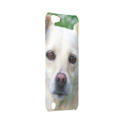 Dog face close-up Hard Case for iPod Touch 5
