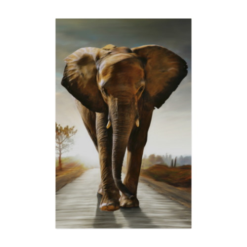"""The Elephant Poster 22""""x34"""""""