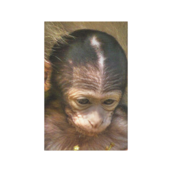 sweet baby monkey poster 1117