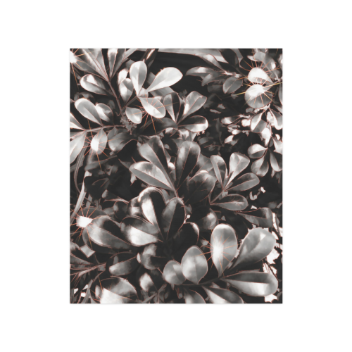 """Foliage-1 Red Edge Poster 20""""x24"""""""