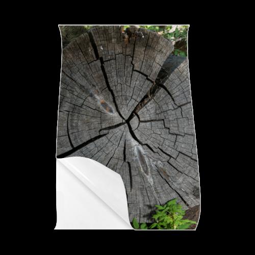 """Dried Tree Stump Poster 23""""x36"""""""