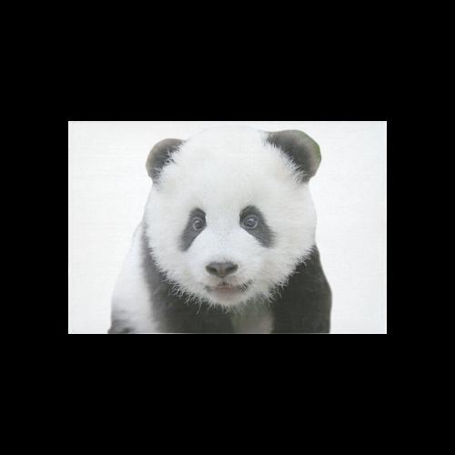 "Panda Bear Cotton Linen Wall Tapestry 60""x 40"""