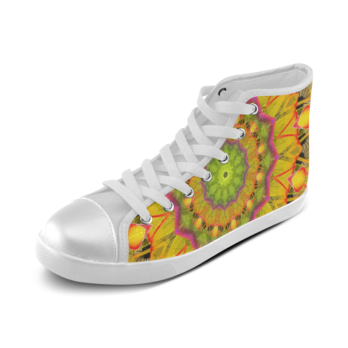 Beach Grass Golden Red Foliage Abstract Fall Days Women's High Top Canvas Shoes (Model 002)