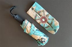 Auto-Foldable Umbrella (Model U04)