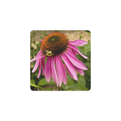 Coneflower and bee Square Coaster