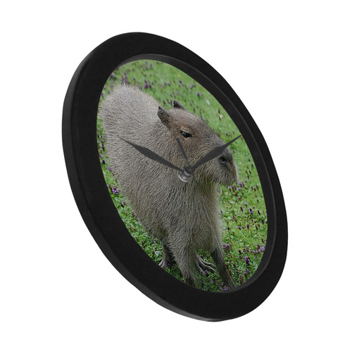 cute capybara Circular Plastic Wall clock