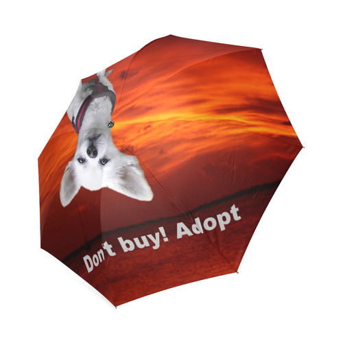 Dog Chihuahua Foldable Umbrella