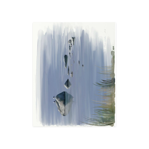 "Gulls on stones, watercollors Poster 20""x16"""