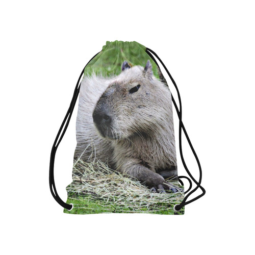 "capybara Small Drawstring Bag Model 1604 (Twin Sides) 11""(W) * 17.7""(H)"