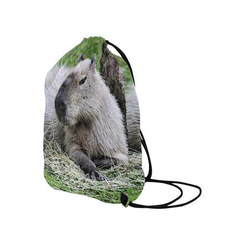 """capybara Large Drawstring Bag Model 1604 (Twin Sides)  16.5""""(W) * 19.3""""(H)"""