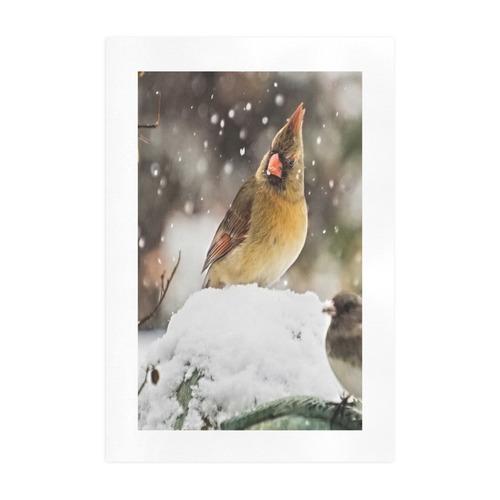 Cardinal In The Snow Art Print 19''x28''