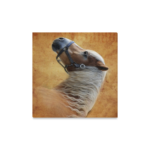 "HORSE © Pimpinella Art Canvas Print 16""x16"""