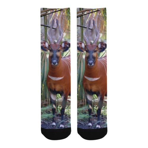 Bongo Socks Trouser Socks