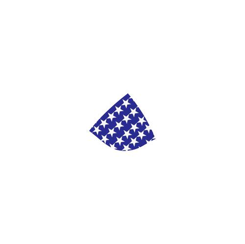 Patriotic America Custom Bikini Swimsuit (Model S01)