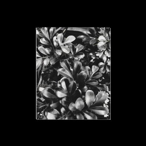 "Foliage #1 - Jera Nour Canvas Print 16""x20"""