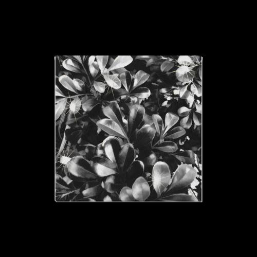 "Foliage #1 - Jera Nour Canvas Print 16""x16"""