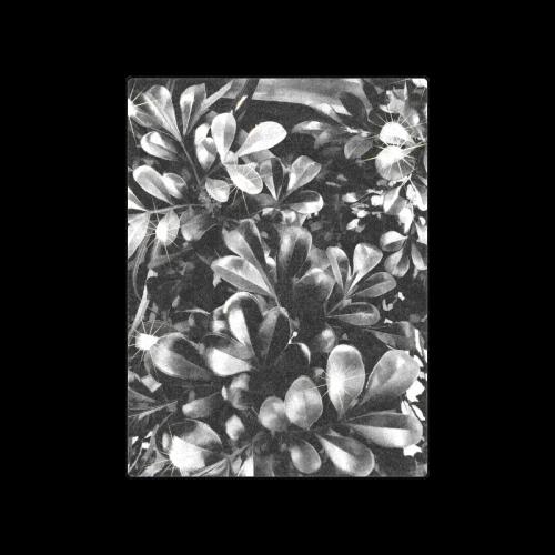 "Foliage #1 - Jera Nour Blanket 50""x60"""