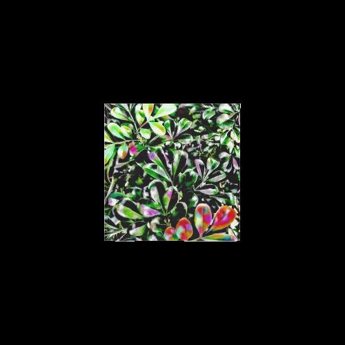 "Foliage-6 Square Towel 13""x13"""
