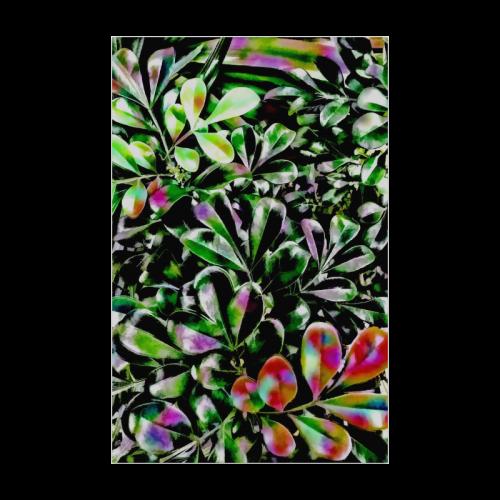 "Foliage-6 Poster 22""x34"""