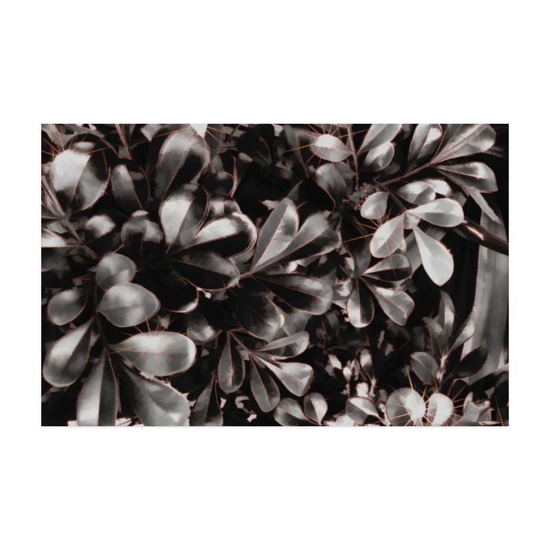 """Foliage-1 Red Edge Poster 22""""x34"""""""