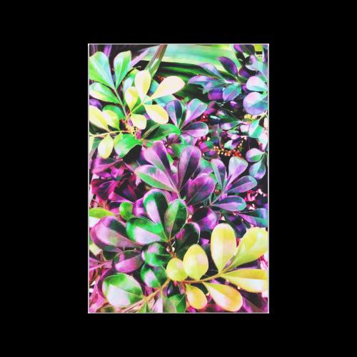"Foliage-3 Poster 20""x30"""