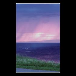 "Purple Rain Poster 23""x36"""