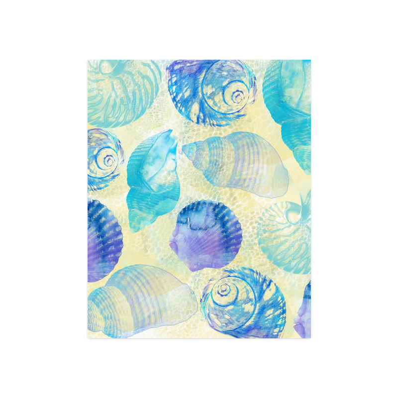 "Seashells Poster 16""x20"""
