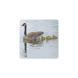 Goose And Baby Goslings Square Coaster