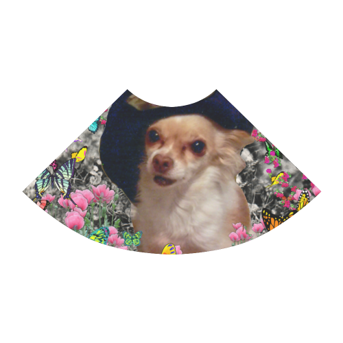 Chi Chi in Yellow Butterflies, Chihuahua Puppy Dog Atalanta Sundress (Model D04)