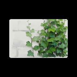 "Watercolor Vines, climbing plant Doormat 24"" x 16"""