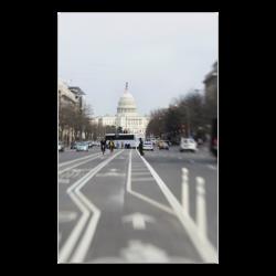 """WDC Capitol Poster 23""""x36"""""""