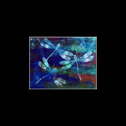 "Mauritius Vintage Dragonflies Colours Y Poster 11""x8.5"""