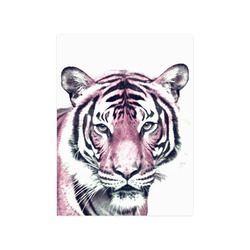 "Animal ArtStudio 916D Tiger Poster 18""x24"""