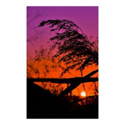 "fantastic sunset Poster 23""x36"""