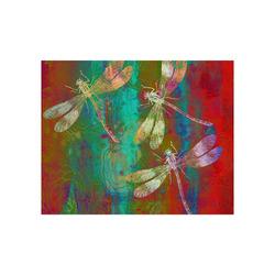 """A Dragonflies Poster 20""""x16"""""""