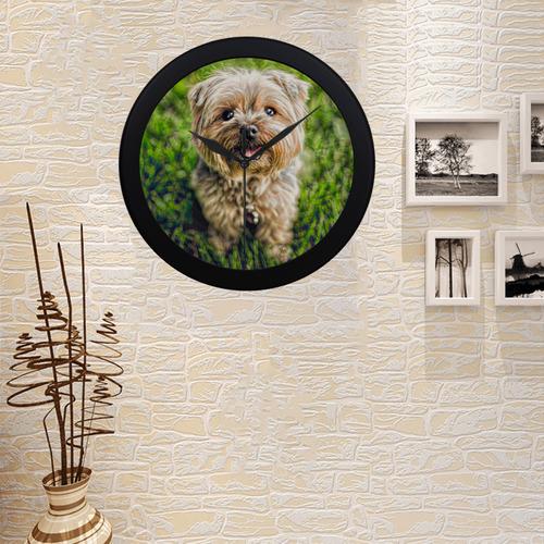 Photography - PRETTY LITTLE DOG Circular Plastic Wall clock