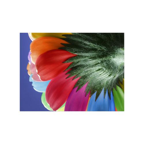 "Rainbow Petals Gerbera Flower Poster 18""x24"""