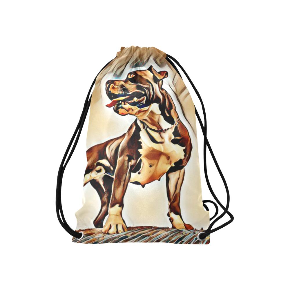 """Artful Staffordshire Small Drawstring Bag Model 1604 (Twin Sides) 11""""(W) * 17.7""""(H)"""