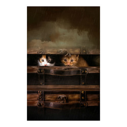 "Little cute kitten in an old wooden case Poster 23""x36"""