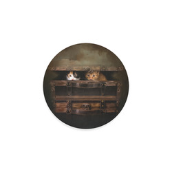 Little cute kitten in an old wooden case Round Coaster