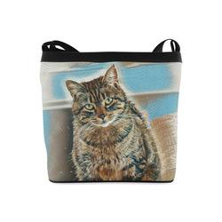 Cat in amusing look Crossbody Bags (Model 1613)