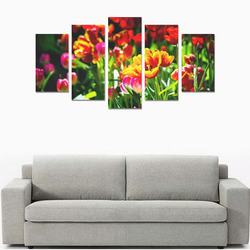 Colorful tulip flowers chic spring floral beauty Canvas Print Sets A (No Frame)