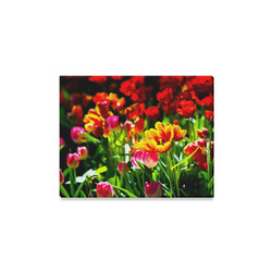 "Colorful tulip flowers chic spring floral beauty Canvas Print 14""x11"""