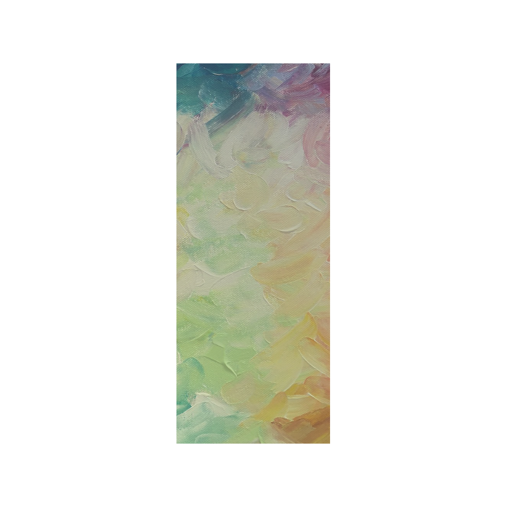 Painted canvas Quarter Socks