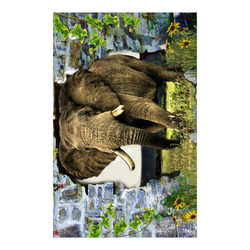 """African elephant Poster 23""""x36"""""""