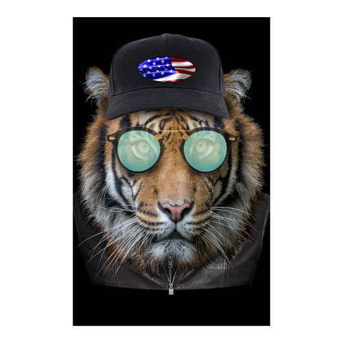 """Dressed up Bengal Tiger Poster 23""""x36"""""""